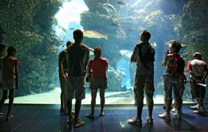 океанографический музей государства Монако